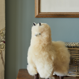 Baby Alpaca Fur Collectable – Champagne