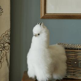 Baby Alpaca Fur Collectable – White